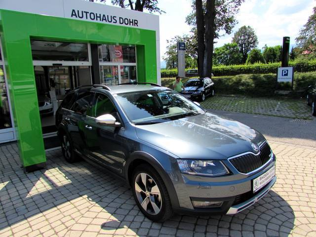 25 gebrauchte skoda octavia scout skoda octavia scout. Black Bedroom Furniture Sets. Home Design Ideas