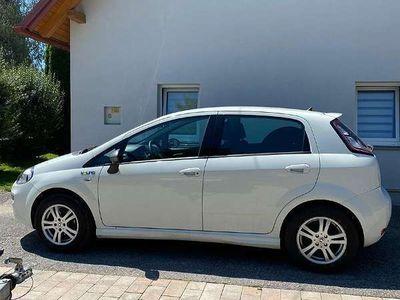 gebraucht Fiat Punto Punto 1,2Young Klein-/ Kompaktwagen