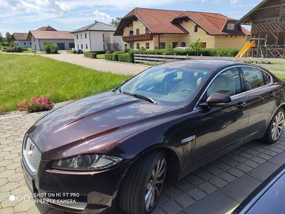 gebraucht Jaguar XF 2,2 Diesel Premium Luxury Limousine