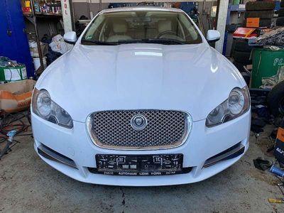 gebraucht Jaguar XF 3,0 Diesel Luxury Limousine