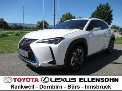 gebraucht Lexus UX 250h 2,0 ADVANCED E-FOUR