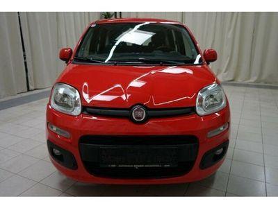 gebraucht Fiat Panda 1,2 69 Lounge // 4.784km //