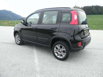 gebraucht Fiat Panda 4x4 4x4 1,3 Multijet II 75 Rock Klein-/ Kompaktwagen