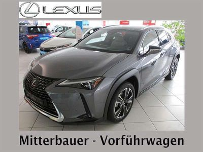 gebraucht Lexus UX 250h Executive Luxury Paket