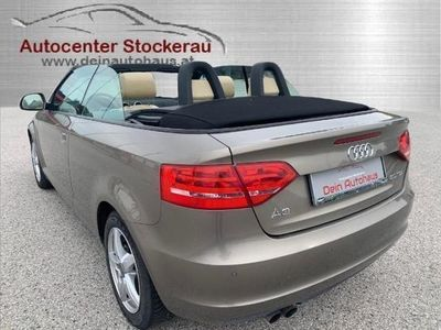 brugt Audi A3 Cabriolet 2,0 TDI Ambition DPF S-tronic