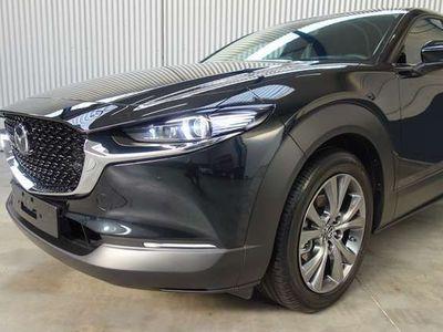 gebraucht Mazda CX-30 2.0 122 Ambition Plus