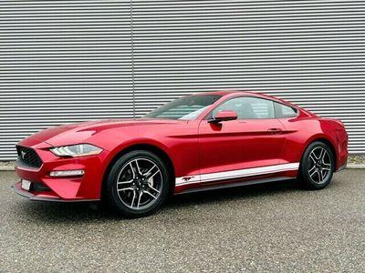 gebraucht Ford Mustang Ecoboost Premium