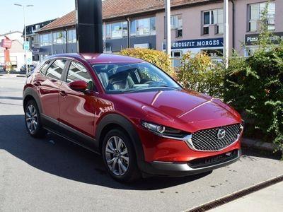 gebraucht Mazda CX-30 X 180 Amb. Plus AWD
