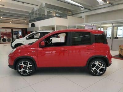 gebraucht Fiat Panda Panda 1.0 MHEV Sport1.0 MHEV Sport