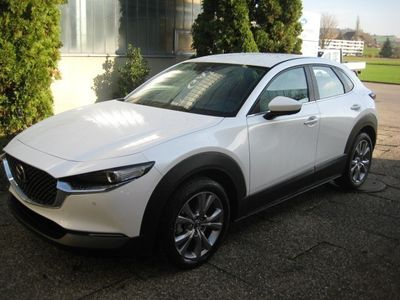 gebraucht Mazda CX-30 SKYACTIV-G M Hybrid 122 Ambition Plus AWD Automa