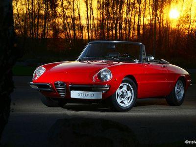 brugt Alfa Romeo Spider 1750 Duetto