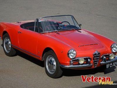 brugt Alfa Romeo Giulia Spider 1600