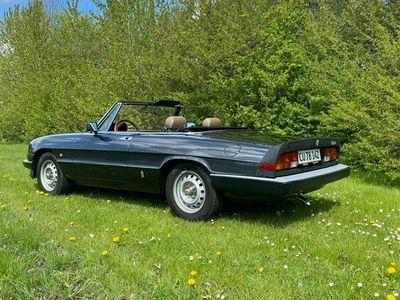 brugt Alfa Romeo Spider 105 115