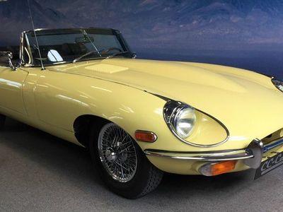 brugt Jaguar E-Type 4,2 Roadster