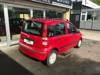 brugt Fiat Panda 1,2 Dynamic ECO