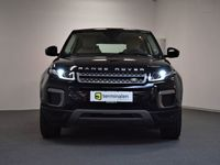 brugt Land Rover Range Rover evoque 2,0 eD4 Pure