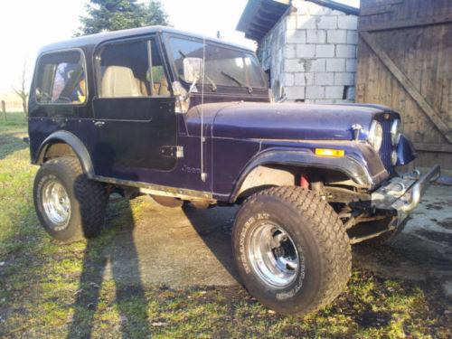 verkauft jeep cj gebraucht 1982 km in paderborn autouncle. Black Bedroom Furniture Sets. Home Design Ideas