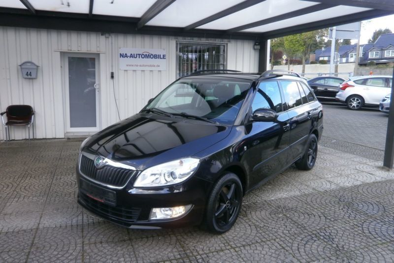gebraucht tsi combi scout shz pdc euro 5 klimaautomatik skoda fabia 2011 km in darmstadt. Black Bedroom Furniture Sets. Home Design Ideas