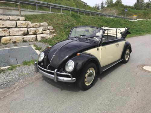 gebraucht 1300 vw k fer 1966 km 1 in bargfeld stegen autouncle. Black Bedroom Furniture Sets. Home Design Ideas