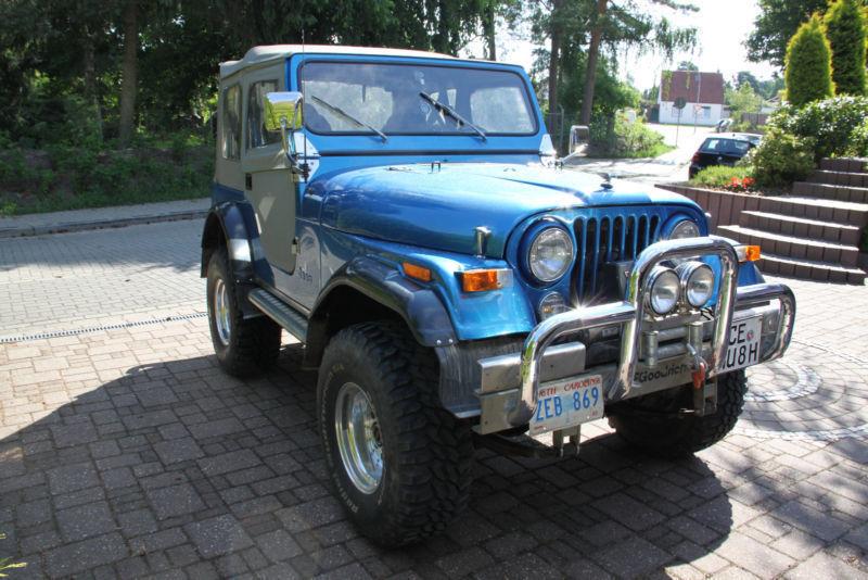cj gebrauchte jeep cj kaufen 15 g nstige autos zum verkauf. Black Bedroom Furniture Sets. Home Design Ideas