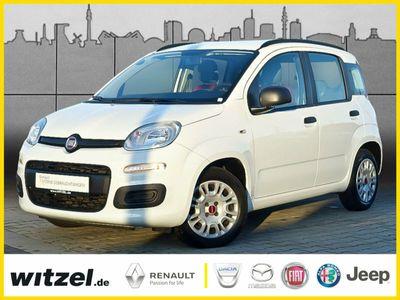 gebraucht Fiat Panda 1,2 Allwetter KLIMA ZV eFH ESP