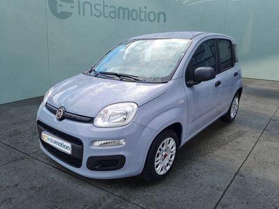 gebraucht Fiat Panda Panda Panda MY21Hybrid 1.0 GSE 51kw E6D MY21 Hy
