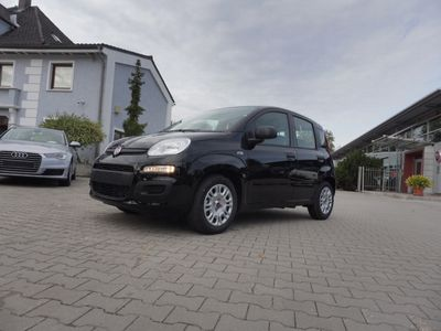 gebraucht Fiat Panda Hybrid GSE Urban *5 Sitzer Klima DAB*