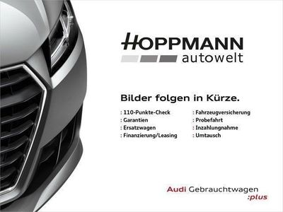 gebraucht Audi SQ5 3.0 TDI quattro AHK KAMERA XENON