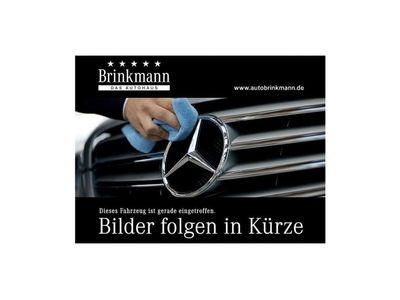 gebraucht Mercedes 250 BlueTEC Lang Navi,Shz B