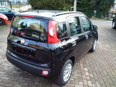 gebraucht Fiat Panda NewEasy+Klima+