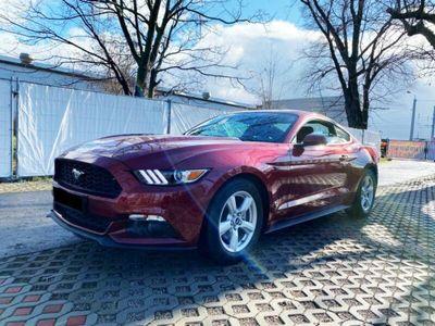 gebraucht Ford Mustang 2,3L ECO Boost Kamera, Leder