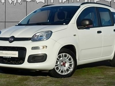 gebraucht Fiat Panda 1,2 POP KLIMA ZV SERVO RADIO