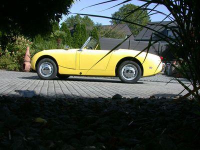 gebraucht Austin Healey Sprite MK1 Froschauge als Cabrio/Roadster in Oberhausen