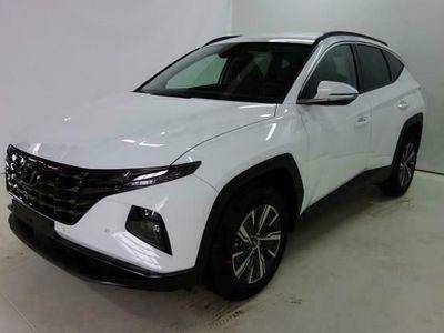 gebraucht Hyundai Tucson Trend 1.6 T-GDi HEV 4WD AT LED/NAVI/TechP