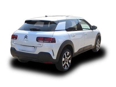gebraucht Citroën C4 Cactus PureTech 130 Stop&Start Shine,Navi,Glasdach,Sitzhe
