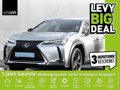 gebraucht Lexus UX 250h Launch Edition *Navi*RFK*LHZ*SHZ*LED*