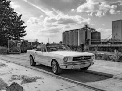 second-hand Ford Mustang Cabrio 64 ½ - V8 260 cui - Der Klassiker