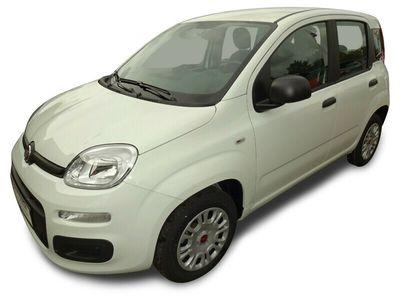 gebraucht Fiat Panda PandaEasy 1.2 69PS KLIMA/DAB/BLUETOOTH/E6D-TEMP