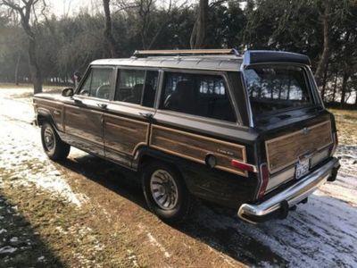 wagoneer gebrauchte jeep wagoneer kaufen 5 g nstige. Black Bedroom Furniture Sets. Home Design Ideas