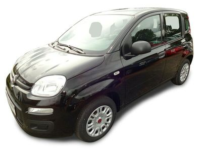 gebraucht Fiat Panda Easy 1.2 69PS KLIMA/DAB/BLUETOOTH/E6D-TEMP