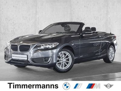 gebraucht BMW 220 i Cabrio Aut Navi Leder Klimaaut Sitzhzg PDC