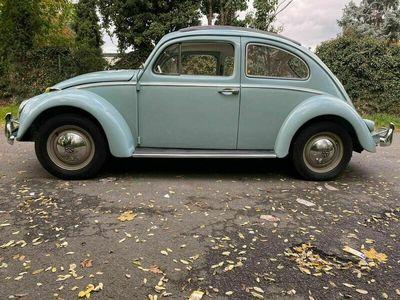 gebraucht VW Käfer 1200 Faltdach
