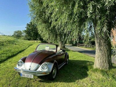 gebraucht VW Käfer VWCabriolet Umbau