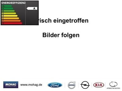 gebraucht Ford Tourneo Connect Trend 1.5 TDCi *Allwetter-PDC*