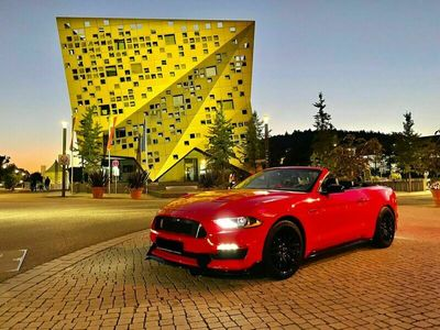 gebraucht Ford Mustang 2.3 EcoBoost Cabrio/Leder/19Zoll/