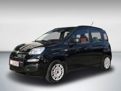 gebraucht Fiat Panda Panda 1.2 My