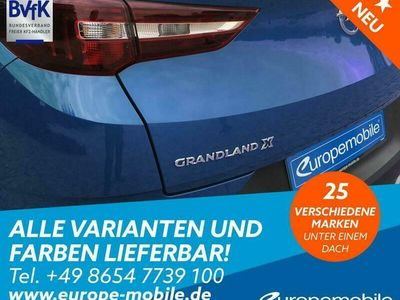 gebraucht Opel Grandland X Selection (D4) 1.2 Direct Injection Turbo 130 (Basic)