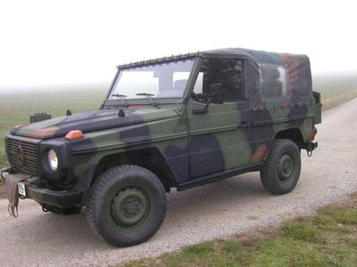 verkauft mercedes g250 wolf bundeswehr gebraucht 1991 km in ttfeld. Black Bedroom Furniture Sets. Home Design Ideas