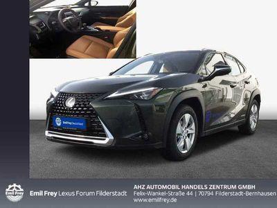 gebraucht Lexus UX 250h Luxury Line FWD Alle Extras