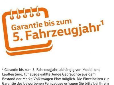 gebraucht VW Touareg V6 TDI Luft Navi Leder AHK Xenon Design